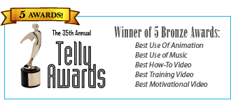 HR Avatar Wins Telly Award